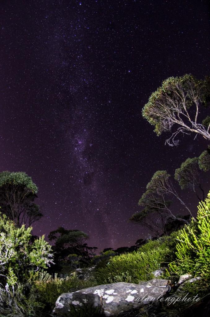 Tasmanian night
